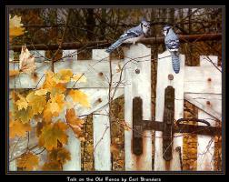 Карл Брендерс. Общение на старом заборе