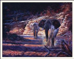 Эндрю Кисс. Слоны