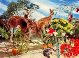 Тони Оливер. Западный серый кенгуру