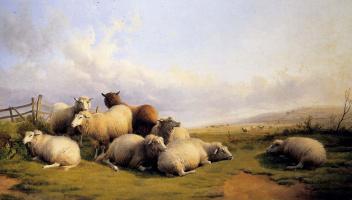 Томас Сидней Купер. Овцы на поляне