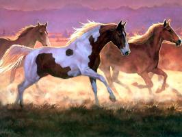 Пэрис Клейтон Вейрс. Лошади