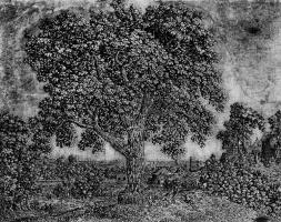 Херкюлес Питерс Сегерс. Большое дерево