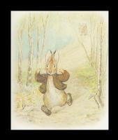 Бенджамин и Кролик Питер Банни. Сказка о кролике Питере 9
