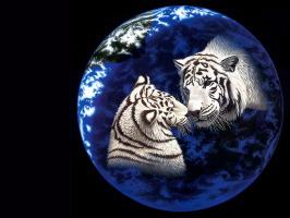 Уильям Шиммел. Земной шар