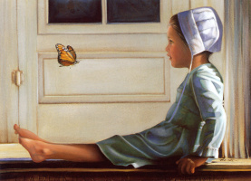 Нэнси Ноэль. Счастье подобно бабочке
