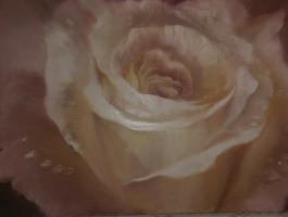 Запах розы