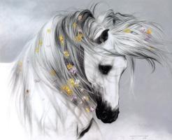 Лесли Харрисон. Белый конь