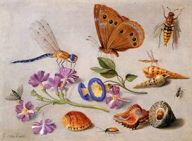 Ян ван Кессель Старший. Натюрморт с бабочкой