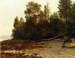 Альберт Бирштадт. Упавшее дерево
