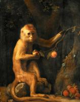 George Stubbs. Green monkey