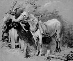 Thomas Gainsborough. Old horse