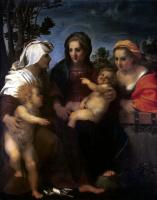 Андреа дель Сарто. Мадонна с Младенцем