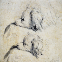 Франц ван Мирис Старший. Два эскиза спаниеля