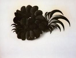 Джорджия О'Киф. Когти орла и фасолевое ожерелье
