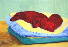 Дэвид Хокни. Собака
