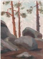 Arkady Pavlovich Laptev. The old stones