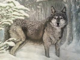 Anna Ruts. Wolf