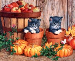 Пэрис Клейтон Вейрс. Маленькие котята