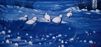 Грэм Шоу. Белые куропатки