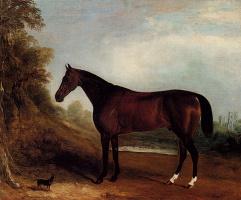 Джон Фернелей. Черный конь
