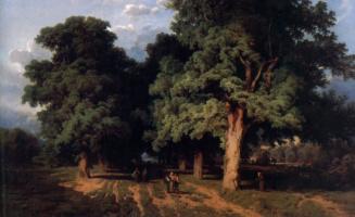 Августа Шеффер фон Винвалд. Липы