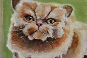 Ксения Баринова. Persian cat