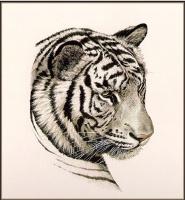 Гай Кохелич. Голова белого тигра