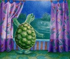 Терил Евремер. Черепаха
