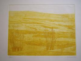 Juan Losada Javega. Landscapes of Spain.