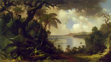 Мартин Джонсон Хед. Вид на Ферн-Три Уолк, Ямайка