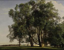 Фердинанд Георг Вальдмюллер. Пейзаж близ Пратера