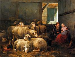 Ван Леемпуттен. Овцы
