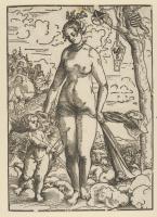 Lucas Cranach the Elder. Venus and Cupid