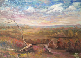 """Andrey Leonidovich Shepel. """"The Voronezh open spaces"""""""
