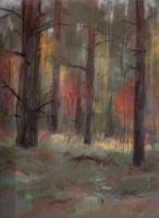 Аркадий Павлович Лаптев. Свет в лесу