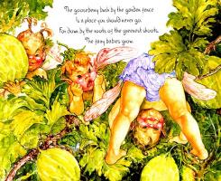 Патриция Ладлоу. Крыжовник в саду у забора