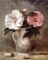Шепард Алонсо Гора. Цветы