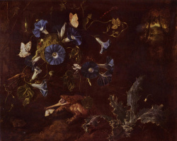 Otto Marceus van Scriec. Blue morning glories, toad, and insects