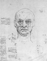 Леонардо да Винчи. Пропорции человеческой головы и глаз