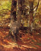 Фрэнк Дувенек. Стволы деревьев
