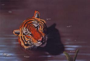 Питер Брюс. Тигр
