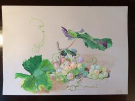 Репродукция картины Федора Толстого виноград