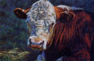 Сара Шарп. Солнечный бык