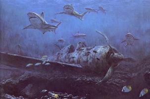 Рэндалл Скотт. Подводный мир