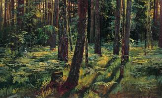 Иван Иванович Шишкин. Папоротники в лесу. Сиверская