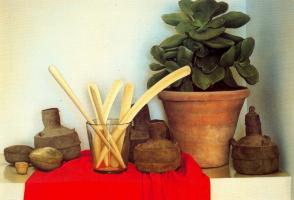Клаудио Браво. Натюрморт с комнатным цветком