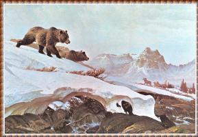 Джон Клаймер. Снежные поля