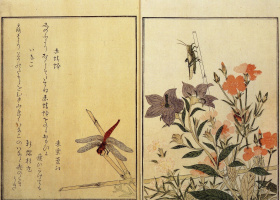 Kitagawa Utamaro. Illustration of a book about insects
