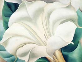 Georgia O'Keeffe. White Datura