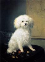 Генриетта Роннер-Книп. Собака